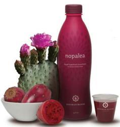 nopalea, detoxification, nopal cactus