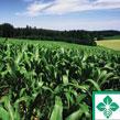 http://www.e-farmcredit.com/FarmLoans/FarmRealEstateLoans/tabid/134/Default.aspx