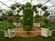 Award-winning strawberry display