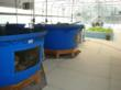 Aquaponic Systems in Nelson and Pade, inc.'s demonstration greenhouse, Montello, WI