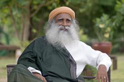 Sadhguru sitting