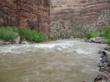 Yampa River whitewater rapids.