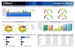 JReport Replaces Prominent Reporting Solution - Customer dashboard template