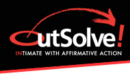 Affirmative Action Plan Providers