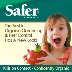 The Best In Organic Gardening Has a New Look!  Check it out!