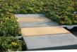 LiveRoof, LLC Introduces RoofStone™: the Integrated Paver Solution for the LiveRoof® Hybrid Green Roof