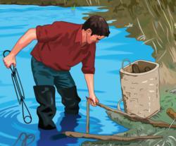 trapper, trapping, furharvesting, furharvester, furtaker, furbearer, beaver, furharvest, setting traps, pelts, set trap, traps, conservation, conserve, animal population control, regulation