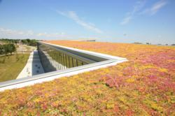LiveRoof Hybrid Green Roof Systems