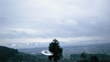 One of a series of nine photos of a UFO circling a tree, taken by Billy Meier in Switzerland