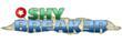 Shy Breaker, location-based, logo