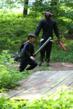 Woodland Encounters