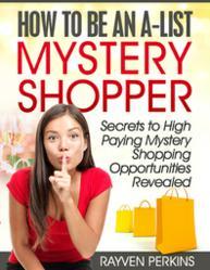 mystery shopper essay example
