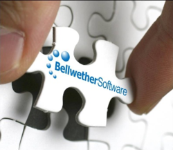 Bellwether Procurement Software, Purchasing software, Right Fit