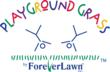 Playground Grass by ForeverLawn