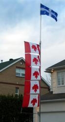 Upside down Canadian flags