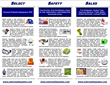 Select Safety Sales Brochure