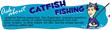 Ask Catfish Fishing