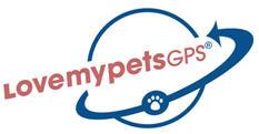 Protecting Pets For Hurricane Season With Gps Dog Tracking