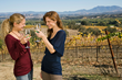 Autumnfest 2014 Top 10 Festivals and Special Events in Temecula Valley...