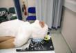 Radiotherapy Mask Making