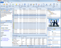 Duplicate File Detective 4 Main Window