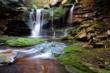 Magical Elakala Waterfall