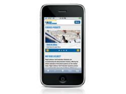 Rigid Lifelines Mobile Website