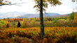 Fall Foliage Hiking Vacations in the Green Mountains of Vermont with Appalachian Trail Adventures Hiking Spa