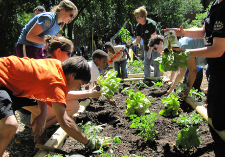 Planting Vegetables With Kids