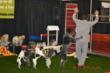 Presenting Main Stage Greater Hickory Pet Expo