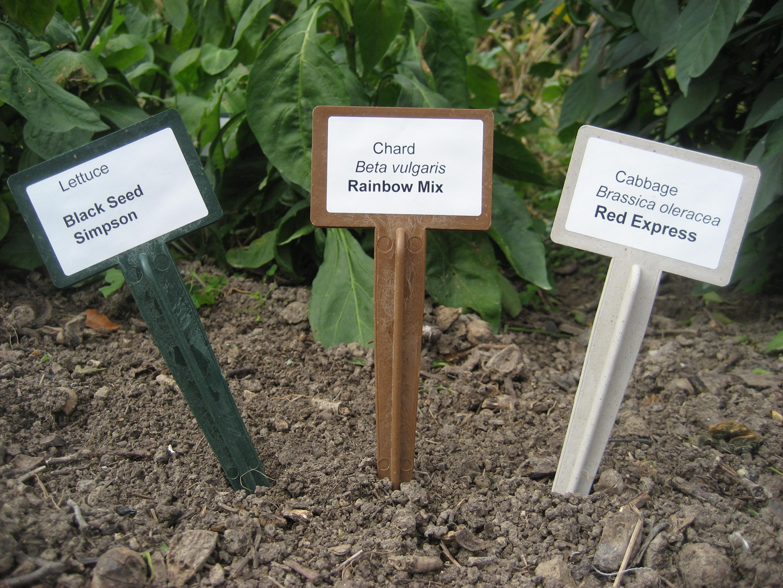 BioMarker Plant Markers by CobraHead win 2012 Green Thumb Award