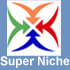 Buy or Sell a Domain through SuperNiche.com's domain broker services.