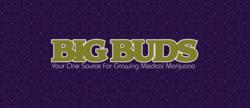 big buds logo