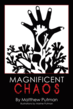 New Poetry Collection Balances Magnificent Chaos