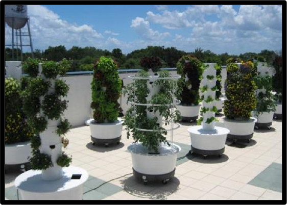 Aquatic Eco Systems, Inc. Features A Line Of Hydroponics Products For .