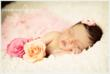 Newborn with Roses by NJ Newborn Photographer