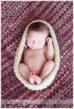 Newborn in Cocoon on Pink Blanket by NJ Baby Photographer Christine DeSavino