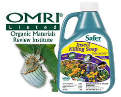 Safer Brand Insect Killing Soap is OMRI Listed Organic
