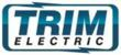 Electrician In Houston Logo