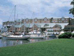 newport ri hotels, newport attractions, newport marriott hotel