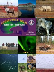 Churchill Wild's Arctic Safari - Wilderness Adventure Vacation - Walk with polar bears. Witness the great caribou migration. Experience arctic wildlife at its finest.