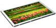 Sharp 8.5-inch LQ085Y3DW01 Image