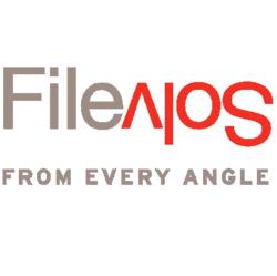 FileSolve logo