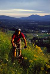 Sandpoint, Idaho Panhandle Bicycling