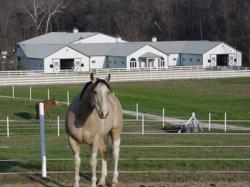 Franklin County Missouri Equestrian Estate for sale