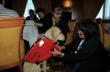 A guide dog tries on a special life jacket.
