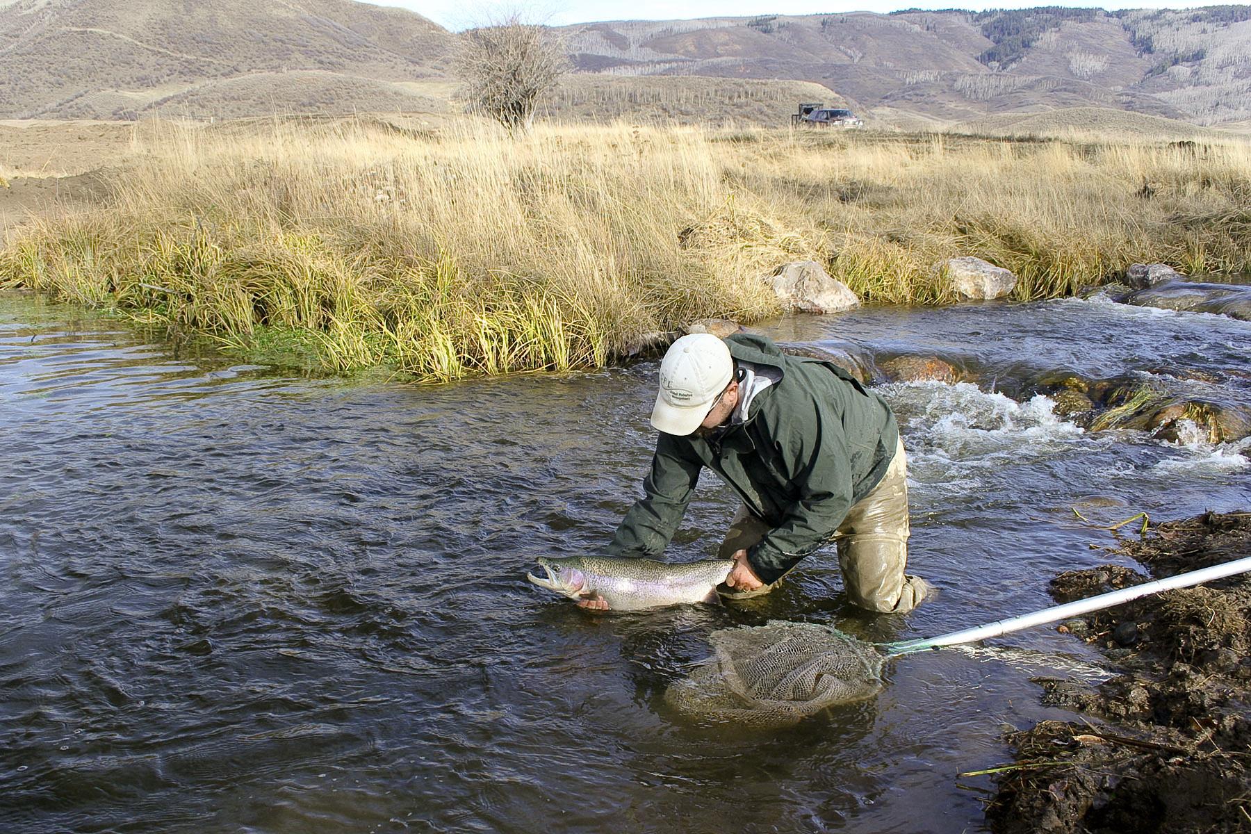 Top colorado fly fishing ranch round mountain ranch for Best fly fishing in colorado