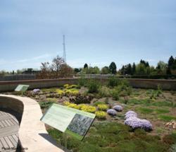 Green Roof at Denver Botanic Gardents
