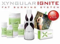 `xyngular, xyng, xyngular mlm, xyngular corporation, xyngular, xyngular leaders, xyngular weight loss, ignite fat burning system, Darren Little, MLM Superhero