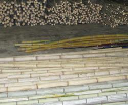 Stacks of raw and kiln-dried bamboo in our warehouse.